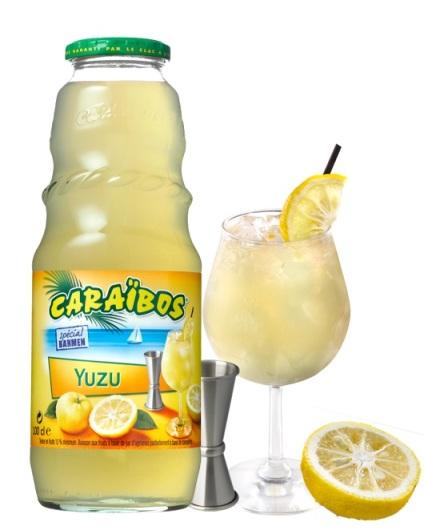 "Cocktail ""Gin Tonic Yuzu"" // DR"