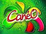 CanéO: première boisson bionaturelle