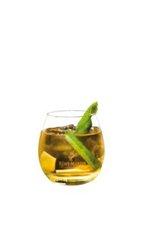 Fiche recette cocktail : le Cognac Summit