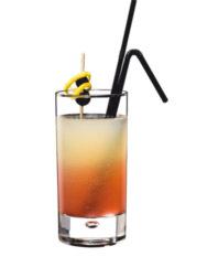 Cocktail Fizz