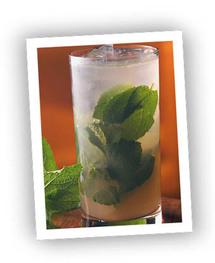 Cocktail Perfect Mojito