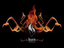 Burn energy drink annonce un partenariat mondial avec David Guetta