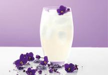 Cocktail Violette Collins à base de liqueur Essence Violette