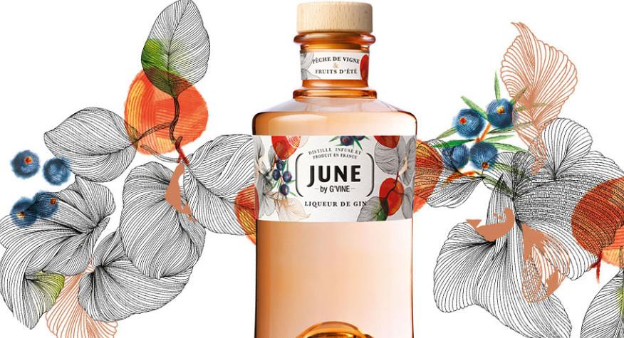 Nouveauté : June by G'Vine
