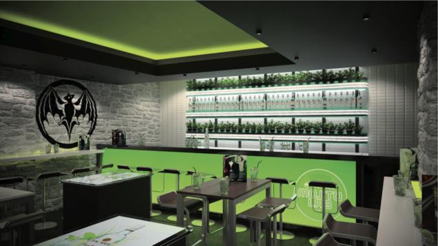 le mojito  cocktail le plus consomm u00e9 par les fran u00e7ais