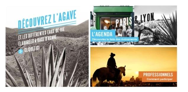 Semaine de l'Agace à Paris et Lyon // © LMDW Fine Spirits