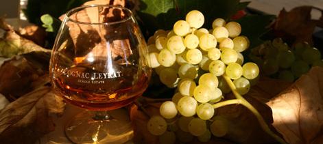 Les Cognacs Leyrat // DR