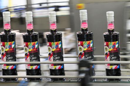 """Védrenne produit la première Crème de Cassis de Bourgogne """"IGP"""""""