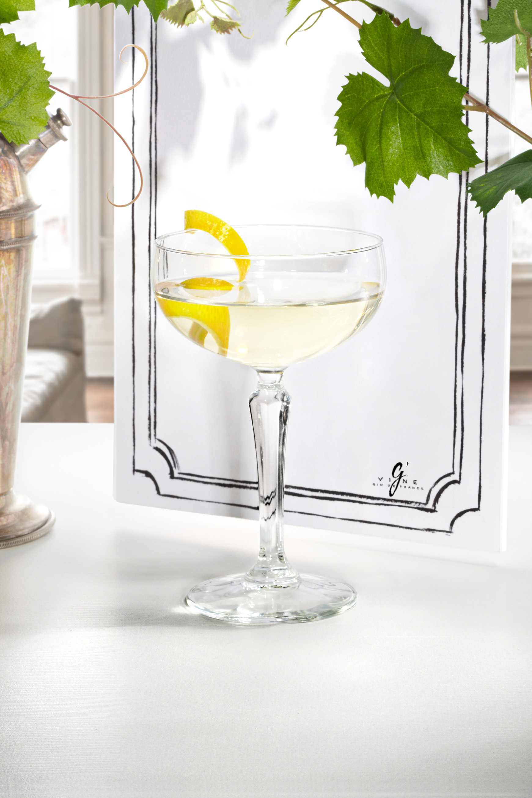 recette cocktail g u0026 39 vine martini