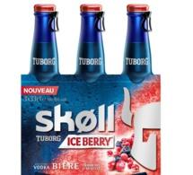 Nouveauté : Ice Berry by SKØLL