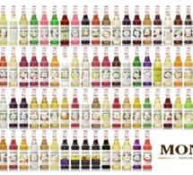 MONIN Day : prochain atelier le 15 mai 2017