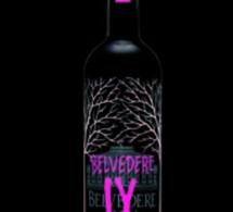 La nouvelle vodka Belvedere IX (One X) sera présentée à Cannes