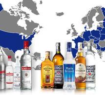Belvédère : coup de froid sur les ventes de spiritueux