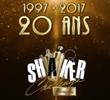 Disneyland Paris Shaker Challenge 2017