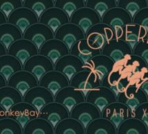 ▶︎ Podcast : Copperbay en mode Smokey Monkey