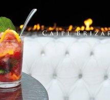 Cours de cocktails à Murano Resort Paris avec Nicolas Humbert et Marie Brizard.