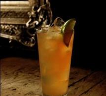 Fiche recette coktail : Monkey Mule