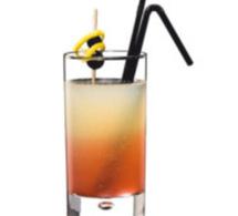 Fiche recette cocktail : le Fizz