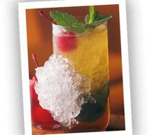 Fiche recette cocktail Mint Julep – Woodford Reserve
