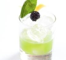 Recette cocktail by Stephen Hinz (2 eme du concours IBS)