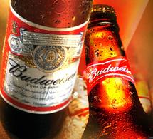Budweiser : la marque de bière la plus puissante au monde