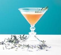 Cocktail MARIE BRIZARD Snapper Martini (Romarin)