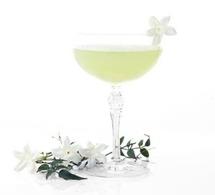 Cocktail MARIE BRIZARD Jasmin Cucumber (Jasmin)