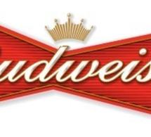 Budweiser fait son show lors du Super Bowl 2012