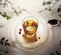 La Maison Suntory présente ses rituels de dégustation au bar du Plaza Athénée