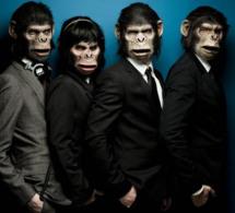 Les Monkey Crahsers débarquent à la Garden Party du W Paris - Opéra