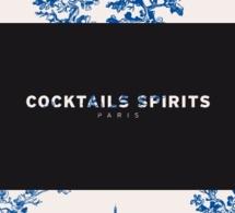 Cocktails Spirits 2013 à la Maison Rouge à Paris