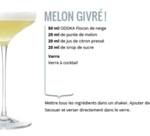 Recette Cocktail Melon Givré by ODDKA