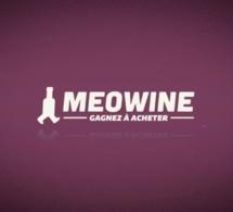 Lancement officiel de Meowine