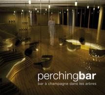 Perching Bar : bar à champagne dans les arbres