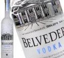 Belvedere vodka à Cannes !