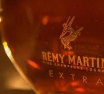 Le marché du Cognac en quelques chiffres
