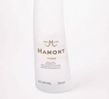 Concours « The Mamont Circumpolar Mission »