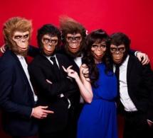 Les Monkey Crashers de retour à Paris le 15 mai 2014