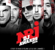 NRJ DJ AWARDS 2014 AU MICS : les nommés