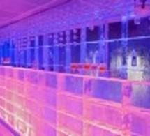 Le Kube crée la 'Frozen Shaker School'