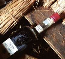 250 ans du rhum Saint James : 1885