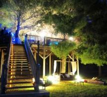 Bar à cocktails Dans les arbres : réouverture le 11 juin 2015