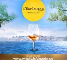 L'Expérience LMDW Méditerranée : les bars éphémères