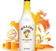 Malibu présente sa nouvelle création : Malibu Banana.
