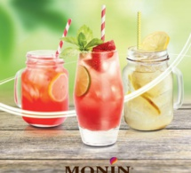 Limonade Maison par MONIN