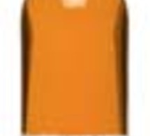 Trois liqueurs Giffard primées au dernier Concours International de Spiritueux ISW 2008