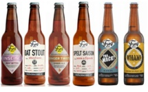 FrogBeer primée aux World Beer Awards 2016