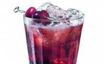 """Recette Cocktail Rubino Tonic par Martini Riserva Speciale """"Rubino"""""""